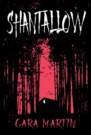 Blog_Shantallow_coverpic