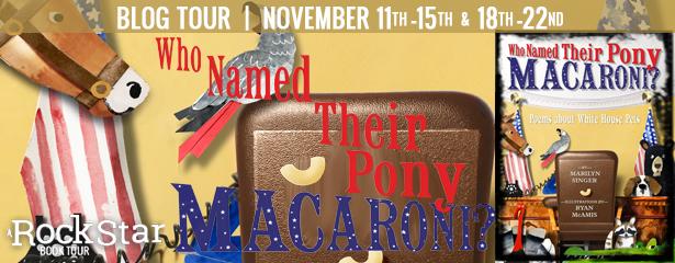 blog_pony_banner